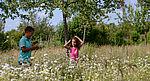 Le parc départemental des Lilas, la nature en ville.