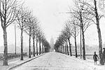 Avenue du chemin de fer, actuellement avenue Paul Vaillant Couturier, au moment de la construction du port à l'anglais © Archives municipales